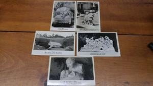 Group of 5 Glendale California Forest Lawn Memorial Real Photo Postcards J49293