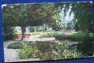 City Park Riverside CA E P Charlton & Co Unposted
