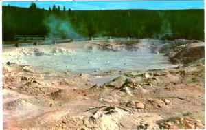 Haynes 41 SERIES #172, Fountain Paint Pot, Yellowstone National Park