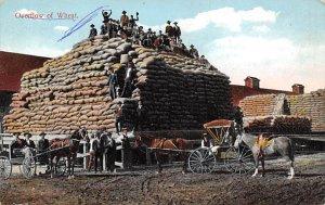 Overflow of Wheat Farming Unused