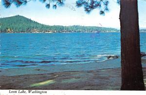 Loon Lake - Washington