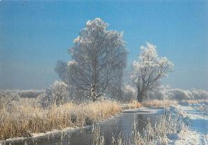 Wicken Fen, Cambridgeshire Winter Waterway