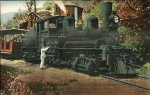 Mt. Tamalpais Mountain Climbing RR Train c1910 Postcard