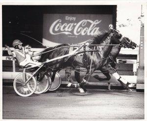 MEADOWLANDS, Harness Horse Race, T.K'S SKIPPER/ TICKET TO HEAVEN, Dead Heat