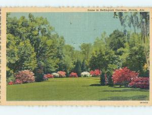 Linen TREES AT BELLINGRATH GARDENS Mobile Alabama AL Q9748