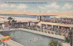 Florida Sarasota The Sarasota Lido 1941 Curteich