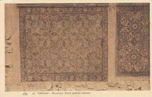 TIMGAD, Mosaique d'une grande maison, Algeria, 10-20s