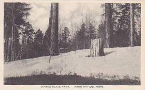 Minnesota Itasca State Park Park Rapids Albertype