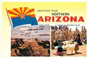 Greetings from Northern Arizona Postcard 1988