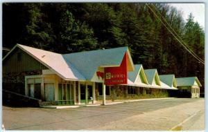GATLINBURG, Tennessee TN   Roadside SMOKIES RESTAURANT Park Entrance  Postcard
