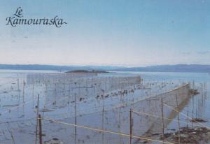 LE KAMOURASKA , Quebec , Canada , 1950-60s