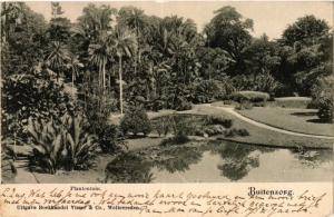 CPA Indonesia, Buitenzorg - Plantentuin (360638)
