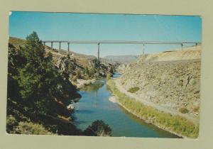 Gunnison River Bridge Post Card Scenic Colorado