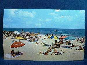 Postcard DE Rehoboth Beach - Summer Scene on the Beach