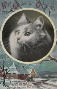 CHRISTMAS, 1900-10s; Profile of Cat, Winter Scene, Poem (2)