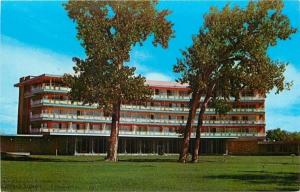 Boulder Colorado~Tree Bent by Wind @ Country Club Hotel~Harvest House~1960
