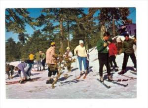 CYPRUS , Winter sports on snow covered Troodos, 60-70s