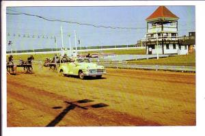 Horse Race, Leave the Wire, Charlottetown Driving Park, Prince Edward Island,