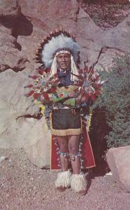 North American Indian Chief , PU-1951