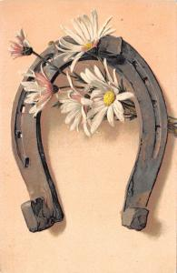 PFB~Horseshoe Decorated With Pink White Daisies~Embossed~1908 Postcard~Ser 2995
