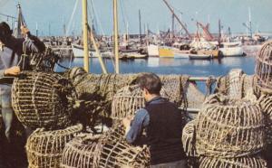 Mending The Fishing Baskets Pots Brixham 1970s Postcard