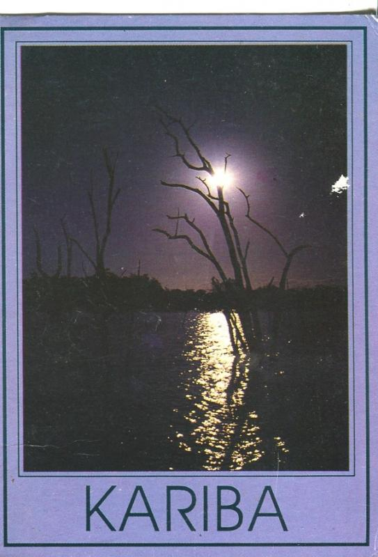 Postal 016767: KARIBA Zambia- Petrfied trees in Lake Kariba
