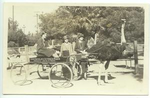 Los Angeles CA Ostrich Farm Lincoln Park Women Clothes Real Photo RPPC Postcard