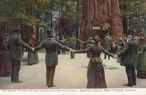 Santa Cruz Big Trees , California , 00-10s ; Giant