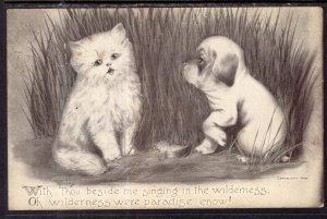 Cat Dog Colby Comic BIN