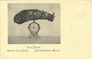 german new guinea, Taro Fruit (1910s) Mission