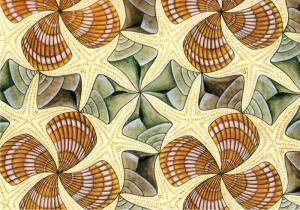 Symmetry Drawing E42 Detail by M.C. Escher Starfish and Shell Art Postcard