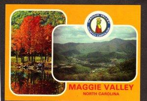 NC Maggie Valley View North Carolina Postcard