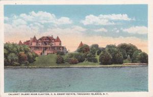 Calumet Island - Emery Estate near Clayton TI, Thousand Islands, New York - WB