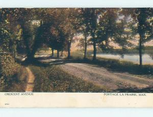 Pre-1907 TOWN VIEW SCENE Portage La Prairie Manitoba MB o1010