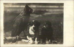 Unusual - Puppy Dog Monkey & Bird Cardinal? Amateur? Real Photo Postcard G19