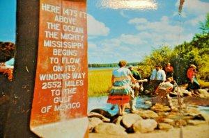 Headwaters Mississippi River Itascha State Park Minnesota Jumbo RPPC