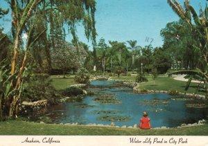 Water Lily Pond,City Park,Anaheim,CA BIN