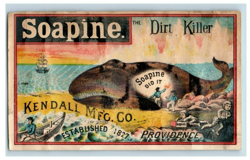 1880's Soapine Dirt Killer Whale Being Washed On Beach Ship P189