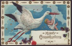 Hearty Congratulations,Birth,Baby,Stork Postcard