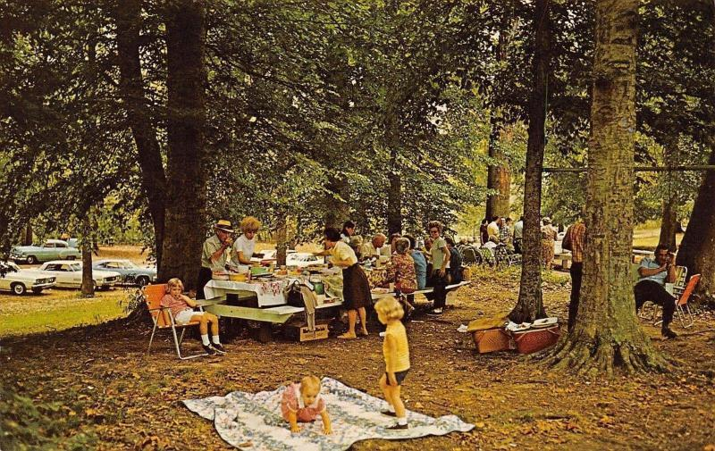 Bowling Green Kentucky~Beach Bend Park Picnic Grounds~Baby on Quilt~1960s Cars
