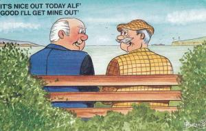 OAP Pensioner Park Bench Erection 1970s Bamforth Comic Humour Postcard