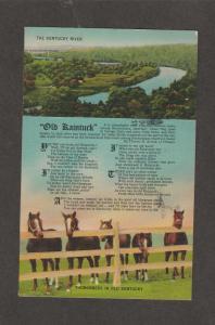 Thoroughbred Horse Postcard Old Kaintuck Kentucky River