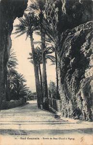 Algeria Sud Oranais Route de Beni Ounif a Figuig Postcard