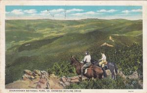 Shenendoah National Park Showing Skyline Drive, Virginia, PU-1935