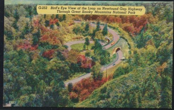 Color PC Loop Newfound Gap Highway Great Smoky Mountains , Unused