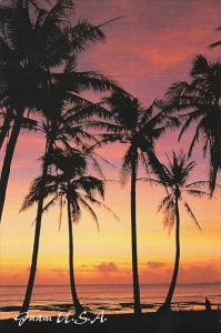 Guam Sunset With Palm Trees Greetings From Paradise