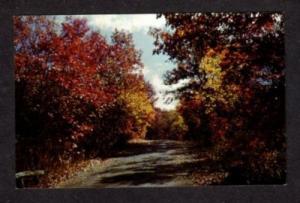 IL Autumn Morton Arboretum LISLE ILLINOIS Postcard PC