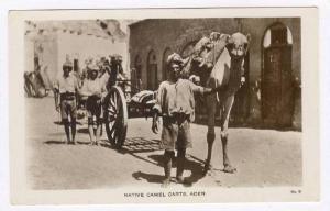 RP: Native Camel Carts, Aden, Yemen, 1910-30s