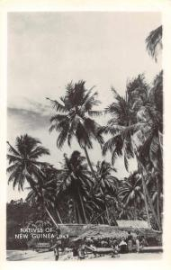 New Guinea Native Village Scene Real Photo Antique Postcard J74999