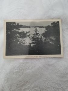 Antique postcard Moonlight through the Pines, Point Au Baril, Ontario, Canada